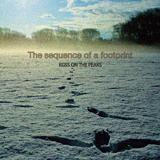 footprint_blog_2