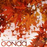gon9_blog