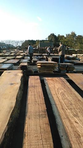 11木材市土場