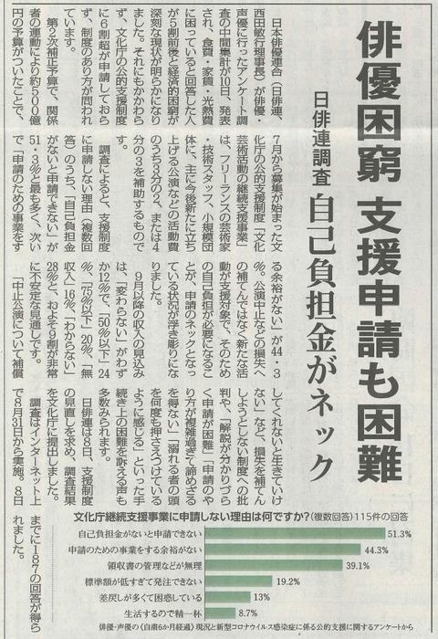文化芸術活動支援事業赤旗 (2)