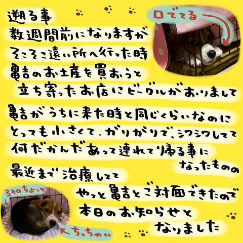 18FCD884-E015-45B0-9447-DB3E1F5ADDCD