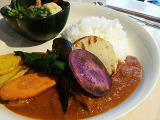 tomato&chicken curry