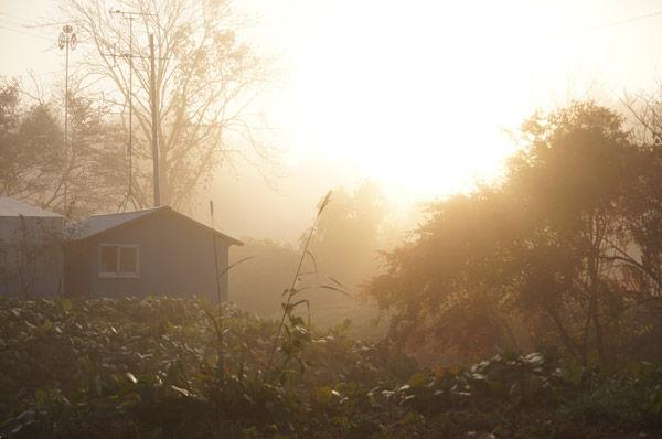 霧の写真って難しい