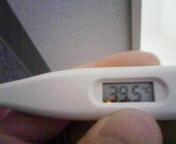 080325熱