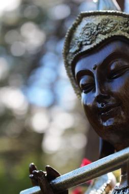 Budda, 6-10-2017 170