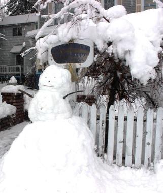 12 doc. snow man 1-6-2019 031