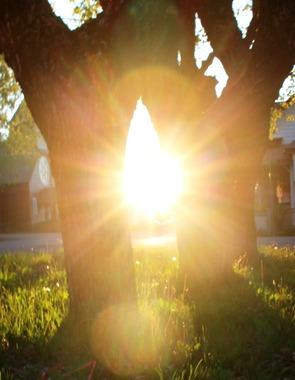May Morning Sun, 5-1-2016 042