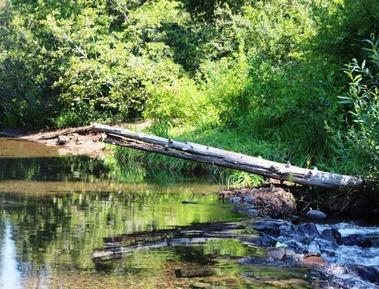 7 doc. McCloud River, 8-14-2018 111
