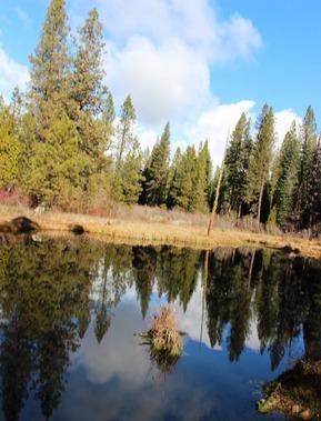 49 doc. cCloud creek  12-21-2018 152