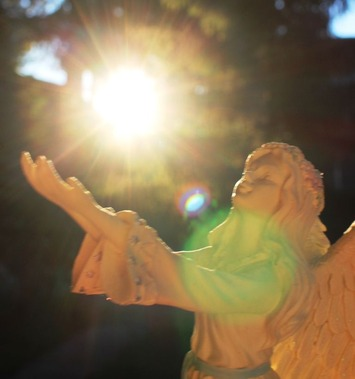 Angel  6-18-2017 036