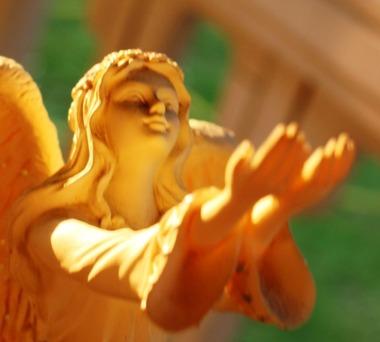 60 doc. Morning sun, Jesus, Quin, & Angel  8-4-2018 392