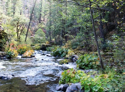 Squaw Valley & McCloud River, 10-5-2016 048