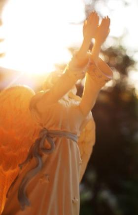44 doc. Morning sun, Jesus, Quin, & Angel  8-4-2018 312