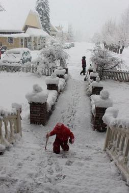 1 doc. snow man 1-6-2019 020