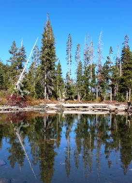 12 doc. Castle Lake & Fall garden  10-18-2018 029