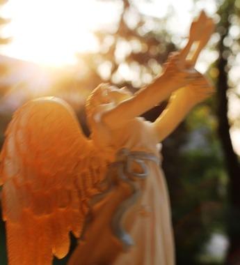 44 doc. Morning sun, Jesus, Quin, & Angel  8-4-2018 313