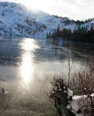 Shasta, Castle lake, 12-02-2016 323