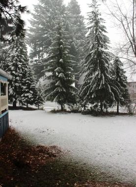First Snow, 11-19-2016 258