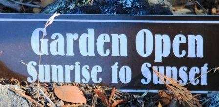 Peace Garden, 3 web, 12-1-'11, IMG_3152