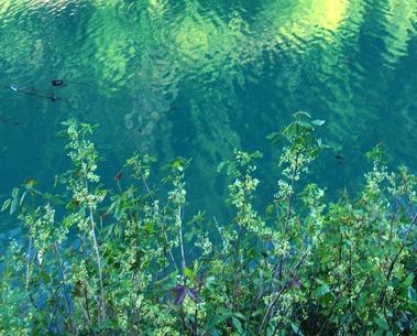 McLoud Lake, 5-15-2016 225