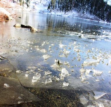 Castle lake, 12-02-2016 379