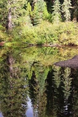 3 doc. McCloud River, 9-30-2018 065