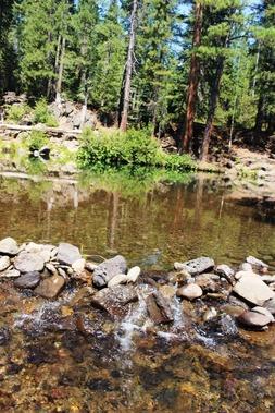 6 doc. McCloud River, 8-14-2018 106