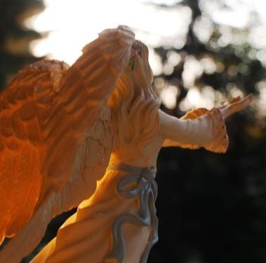 46 doc. Morning sun, Jesus, Quin, & Angel  8-4-2018 320