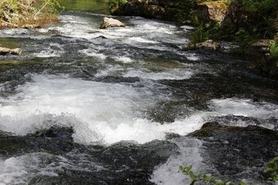 McCloud River, 5-14-2017 123