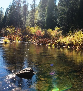 6 doc. McCloud River,   10-18-2018 188