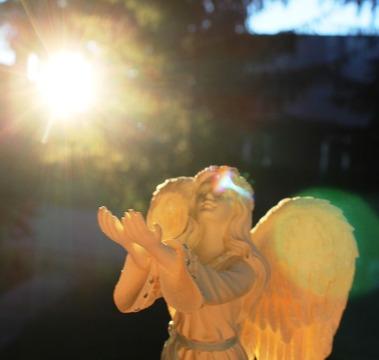 Angel  6-18-2017 038