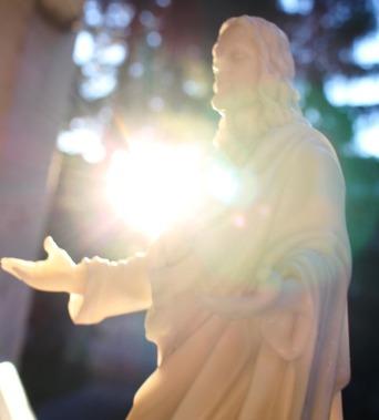 9 doc. Jesus with Shasta Daisy  6-29-2018 072