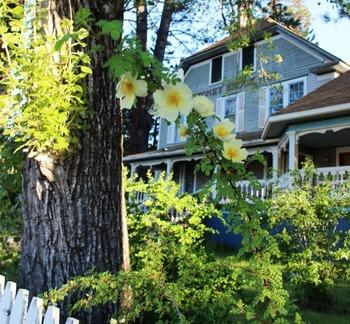 Garden, 5-22-2017 062