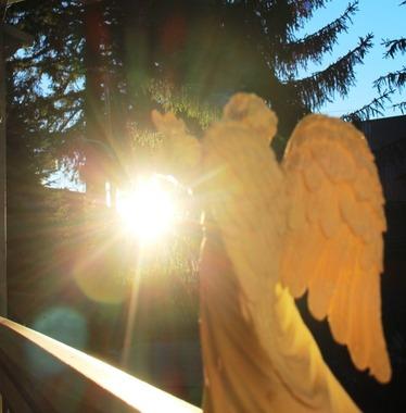 Angel  6-18-2017 017