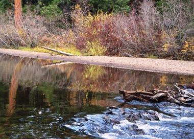 McCloud River, 11-5-2015 455