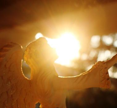 56 doc. Morning sun, Jesus, Quin, & Angel  8-4-2018 371