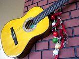 ディスプレイ・ギター