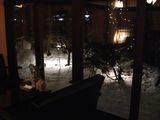雪景色の中庭2