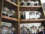 コーヒー豆各種