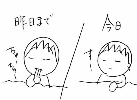IMG_2846