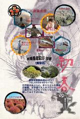 2010年賀状【完成版】