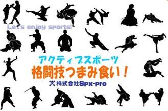 11/12東京都中央区で格闘技体験!「格闘技つまみ食い!」