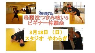 格闘技つまみ喰い3 ビギナー体験会:初心者大歓迎!ボクシング・レスリング・柔術・護身術・セルフディフェンス・グレイシー柔術・ブラジリアン柔術