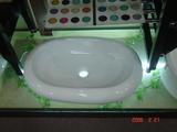洗面ボール2