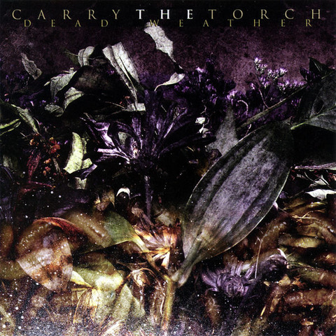 73 Carry The Torch 321
