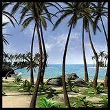 Tropical island, the Beach