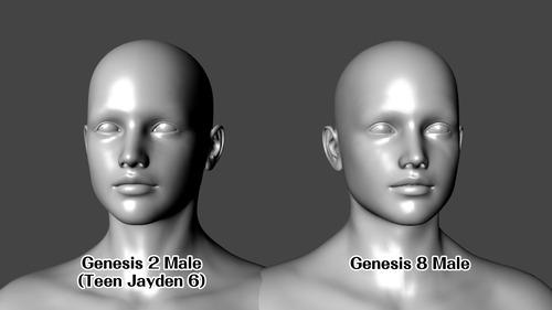 Jayden 6 Genesis 8 Head