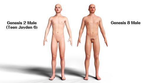 Teen Jayden 6 Genesis 8 Body