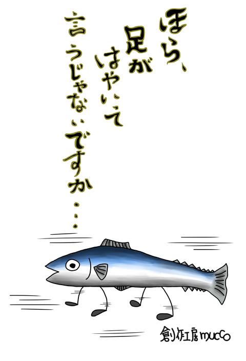足の速い魚2
