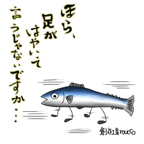 足の速い魚